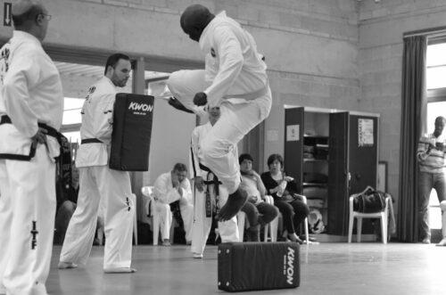 Senior Taekwondo