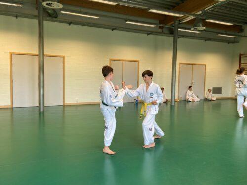 Ecole de Taekwon-Do Hwarang